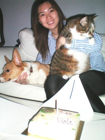 Flying Duchess Cat Sitters Dog Sitters Toronto Cat